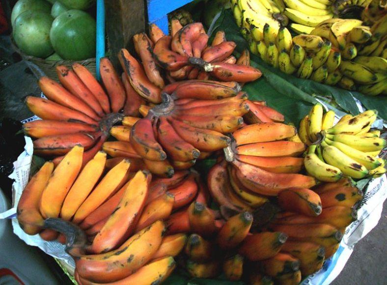 Red Bananas (CC)