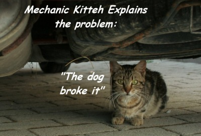 The dog broke it ©2011