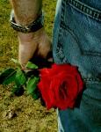 Rebel Rose (CC)
