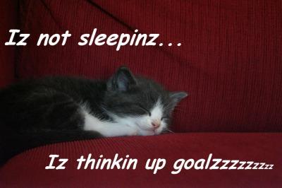Iz Thinkin Up Goalzzzzz © 2011
