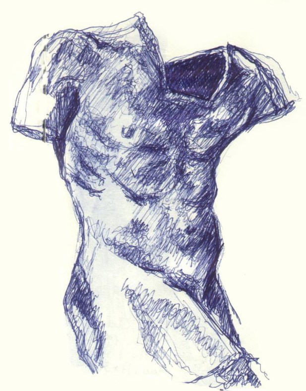 Male Torso - Drawing (CC)