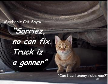 Truck is a gonner ©2011