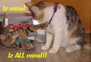Iz mine!  ©2012