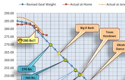 Close up of my weight chart dated 2012-01-19 ©2012