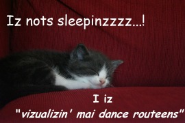 """Iz nots sleepinzzz...! I iz """"vizualizin' mai dance routeens"""" ©"""