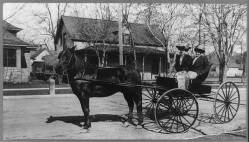 Horse and Buggy - Public Domain Image