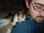 Cat Cute Kitten Cute Guy Man Beard (CC)
