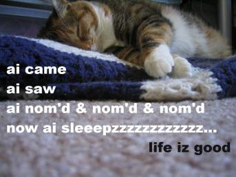 ai came, ai saw, ai nom'd and nom'd, now ai sleepzzz... life iz good