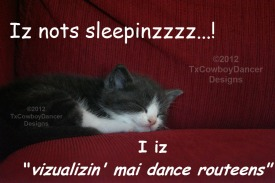 cat sleepy-visualizing my dance routines-with copyright watermark ©2012