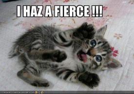 I haz a fierce