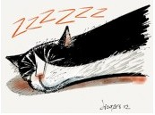 Snoring Cat -- Click on the link if you'd like to have a coffee mug with this design