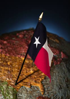 Texas flag on globe
