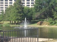 14. Looking across the street at the fountain in the middle of Turtle Creek