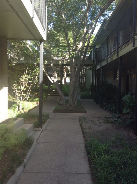 31. One of the coolest things about where I live is this courtyard. Everytime I walk through it I feel like I'm in New Orleans