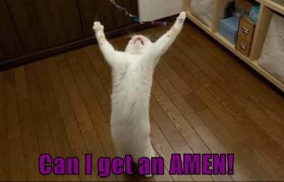 can-i-get-an-amen-kitty