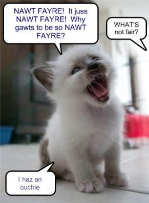 nawt fair