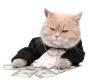 """My Top Ten """"Make Money Online""""sites"""