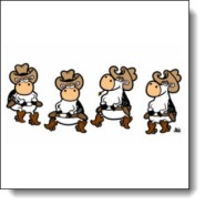 linedancing-cows